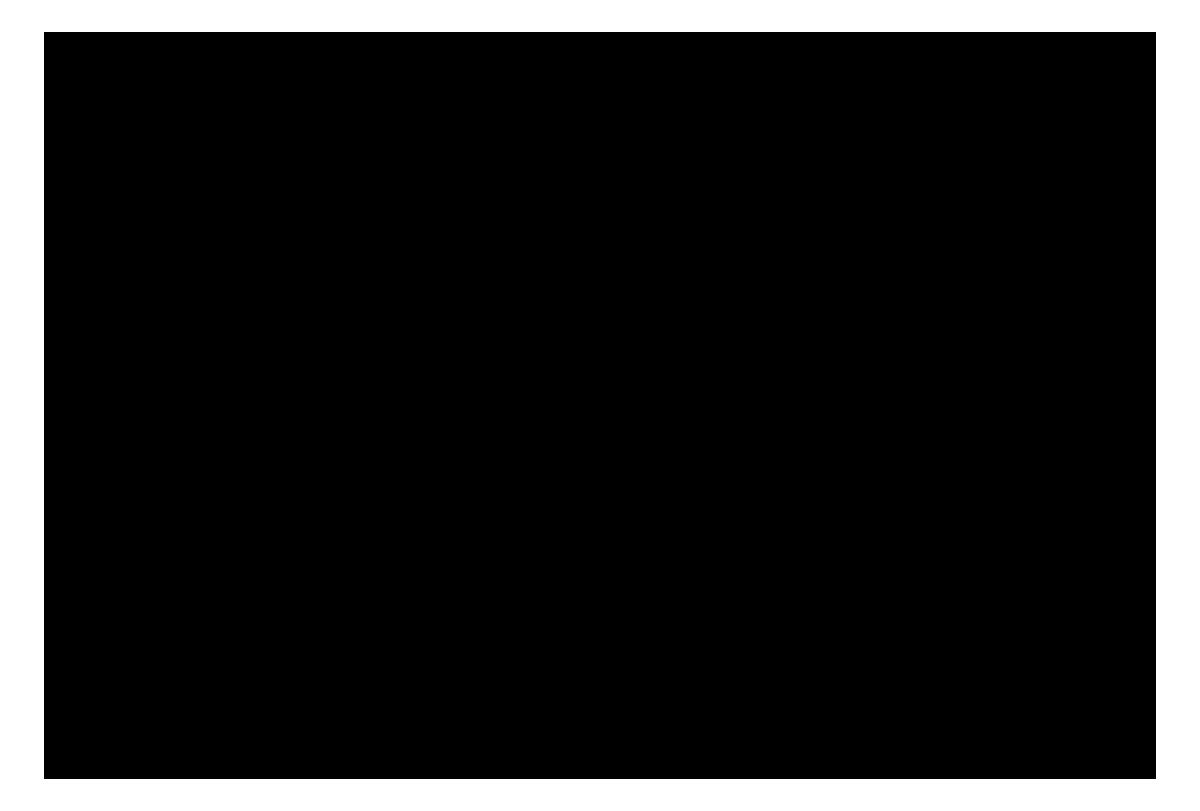 adidas-logo-atom-design-professionals-klein